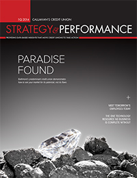 1Q 2014 Strategy & Performance