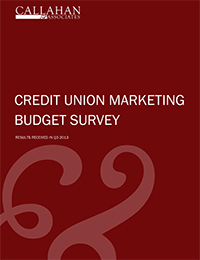 2013 Credit Union Marketing Budget Survey